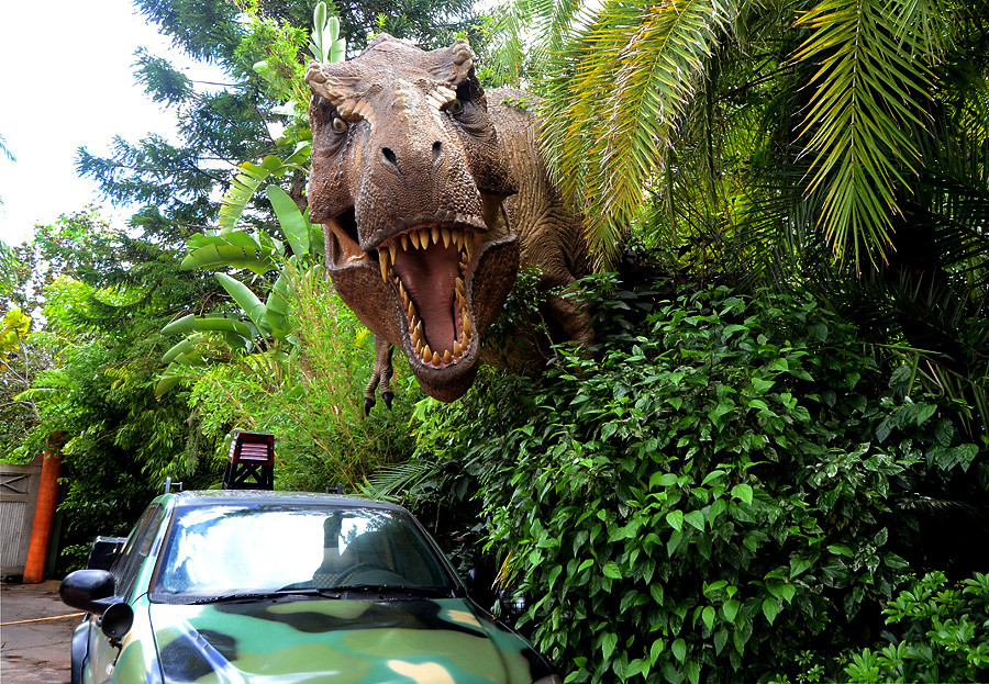 Which Park Is Better Universal Studios Or Islands Of Adventure